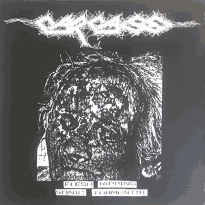 """Carcass """"Flesh Ripping Sonic Torment"""" 12inch"""